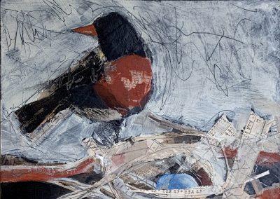 Robin Nest I